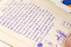 essay writing, free essay topics, sample works recommendation essay ...