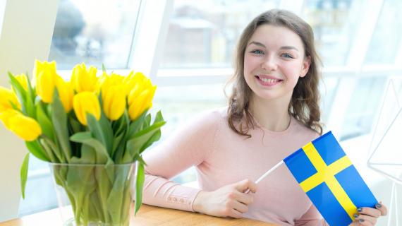 Как выиграть стипендию Visby (Швеция)?